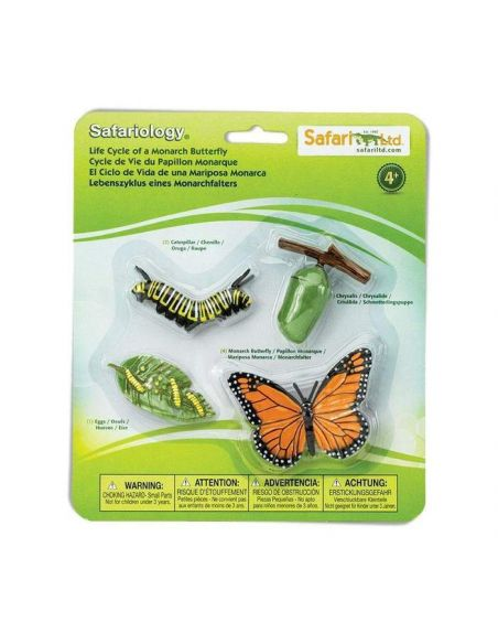 Cycle vie papillon Monarque figurine educative montessori education enrichissement safari