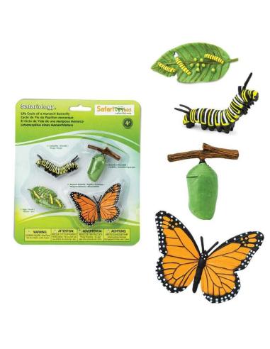 Figurines cycle de vie du papillon Monarque - Safari Ltd® 622616 Safari Ltd® {PRODUCT_REFERENCE}  Cycle de vie - 3