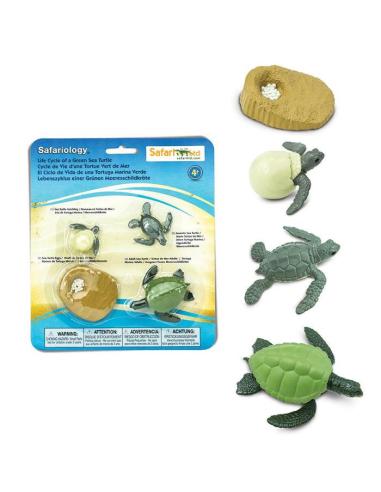 Figurines cycle de vie de la tortue de mer - Safari Ltd® 662316 Safari Ltd® {PRODUCT_REFERENCE}  Cycle de vie - 3