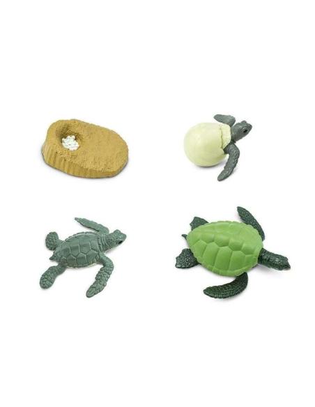 Figurines cycle vie la tortue mer Safari 662316 Matériel pédagogique Enrichissement Montessori Jouet Cartes maternelle science v