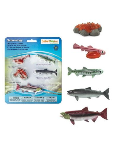 Figurines Cycle de vie du saumon - Safari Ltd® 100267 Safari Ltd® {PRODUCT_REFERENCE}  Cycle de vie - 4