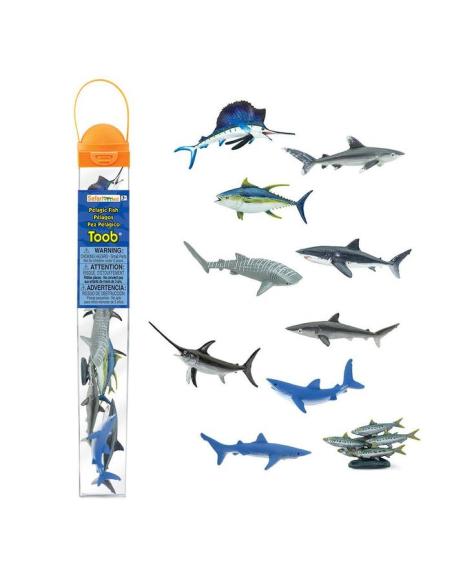 figurine montessori educative enrichissement pedagogie poisson pelagique thon espadon sardine continent amerique tube geographie