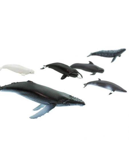 Montessori tube lot figurines Baleine bleue franche bosse boréale grise pilote Petit rorqual Bry Cachalot Béluga