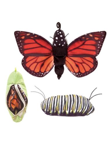 Marionnette à main du cycle de vie du papillon (60cm)  - Folkmanis 3073 Folkmanis {PRODUCT_REFERENCE}  Animaux et végétaux - 5