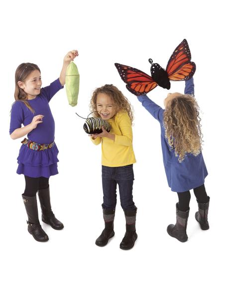 Cycle vie evolution papillon monarque Marionnette main professionnelle materiel didactique educatif pedagogique orthophonie