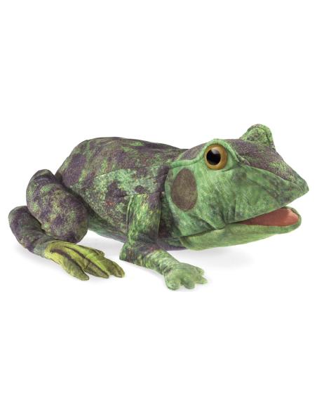 Cycle vie grenouille marionnette peluche metamorphose materiel science pedagogique educatif ecole primaire maternelle main theat