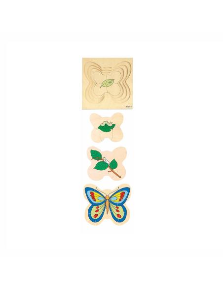 Puzzle à étages du cycle de la Papillon
