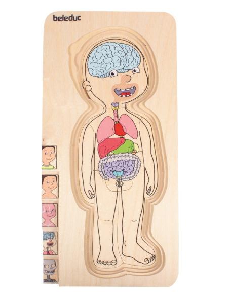 Puzzle étages découverte corps humain garçon Beleduc 17170 science anatomie materiel pedagogique educatif squelette
