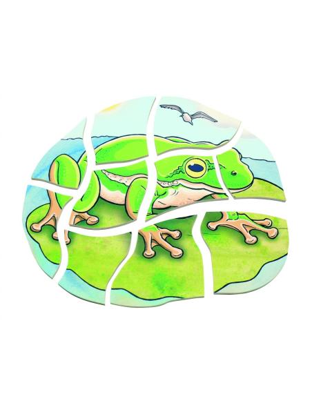 Puzzle étages cycle vie grenouille Beleduc materiel sequence science ecole maternelle primaire catalogue parentalist