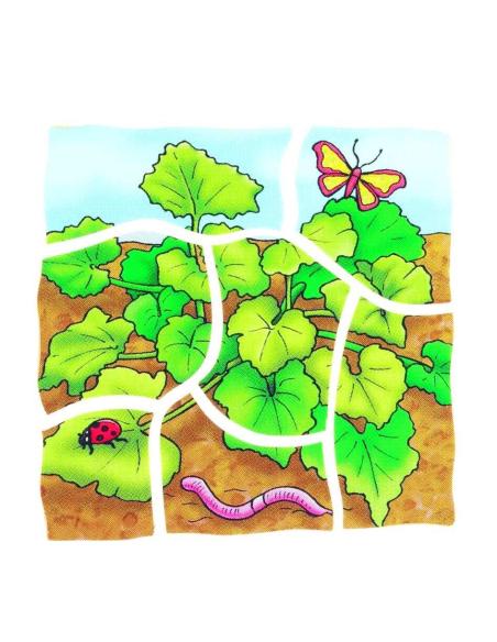 Puzzle étages croissance vegetal Citrouille plante biologie ddm materiel educatif pedagogique apprentissage actif