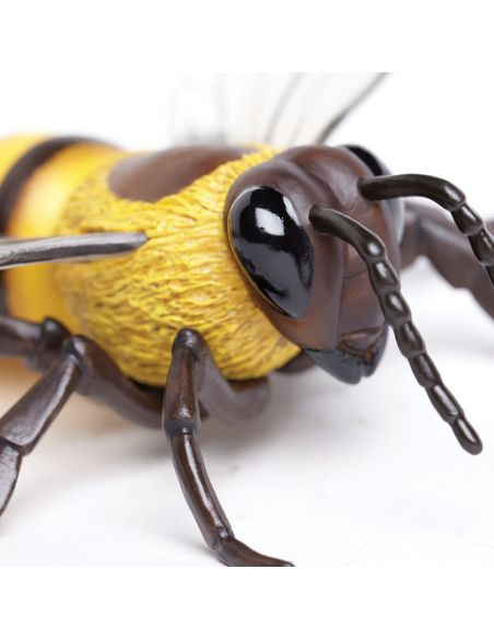 Figurine Abeille modèle géante xl safari 268229 science etu ddm biologie decouverte atelier pedagogique educatif theme ecole e