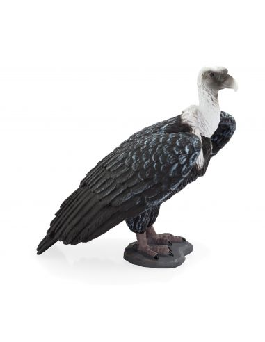 Figurine Vautour fauve - Mojo 387165 Mojo {PRODUCT_REFERENCE}  Oiseaux - 1